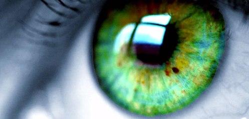 eye-macro